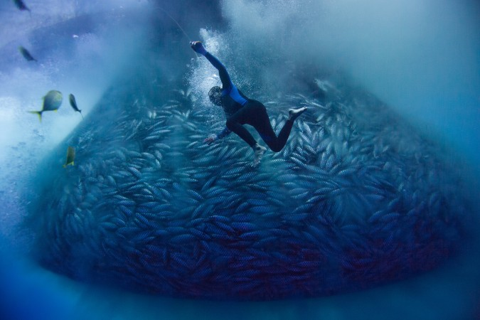 THESE MEN DIVE UP TO 40 METRES FOR FISH WITH NOTHING BUT A