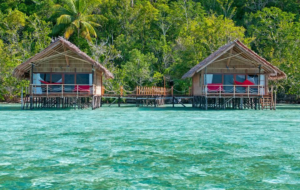 Papua explorers dive resort travel the coral triangle - Raja ampat explorers dive resort ...