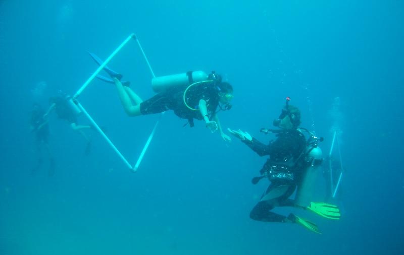 dive-courses.jpg