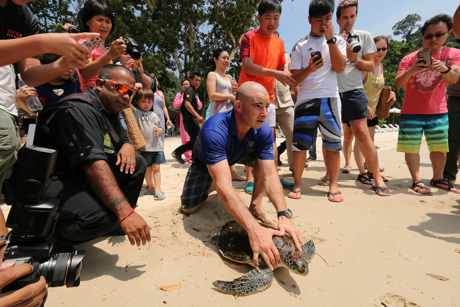 gaya-island-resort-marine-centre-sea-turtle-release-jpg.jpg