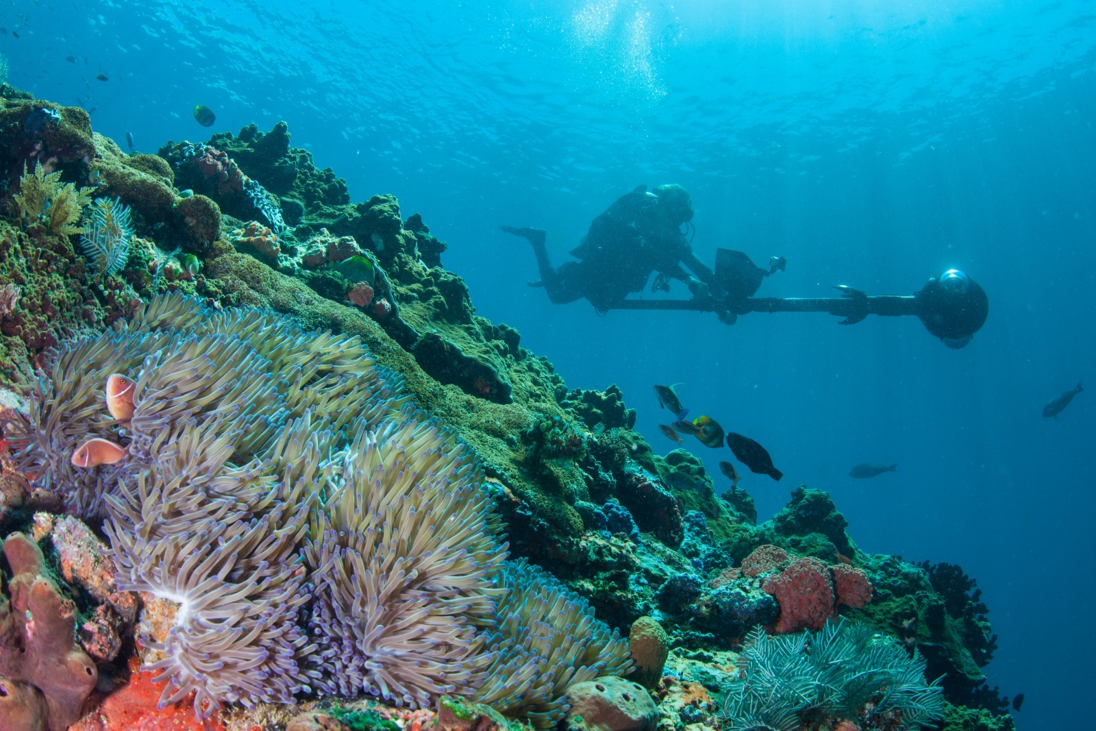 Catlin Seaview Survey using 360 degree camera tech to map the reefs of Komodo National Park
