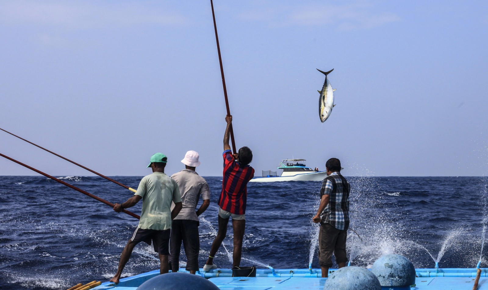 Pacific countries set to deliver coral triangle 39 s first for The fishing line