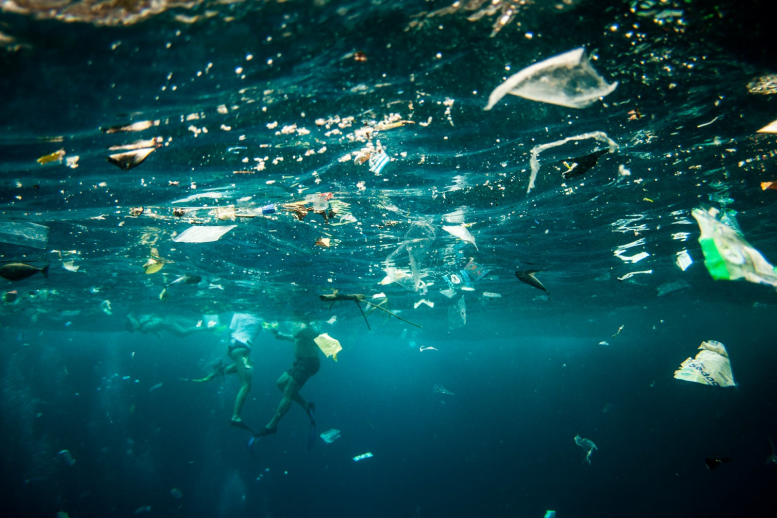 Plastic trash in Indonesia's seas