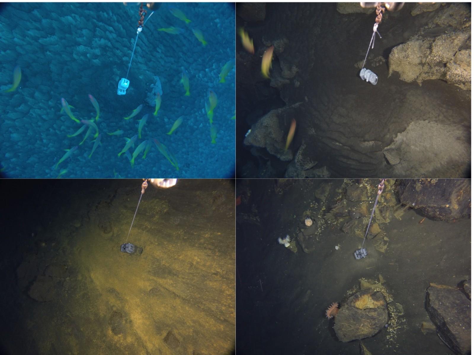 seafloor_images.jpg