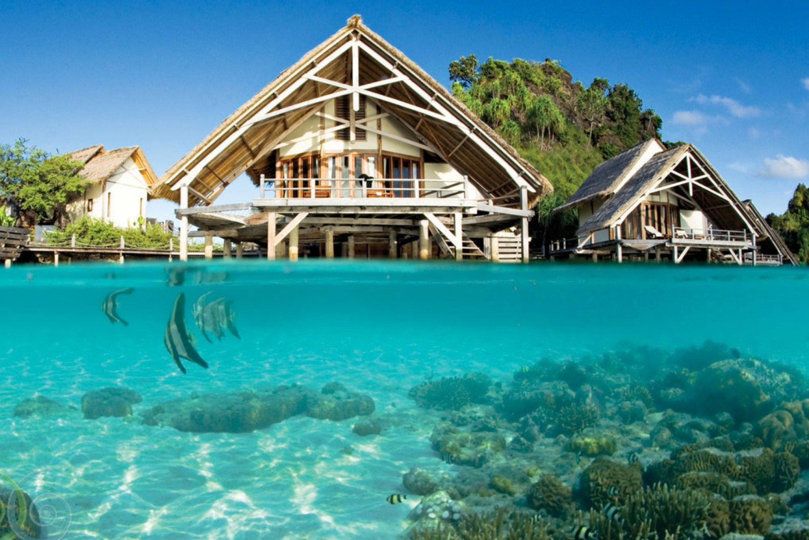 coral_garden_misool_eco_resort
