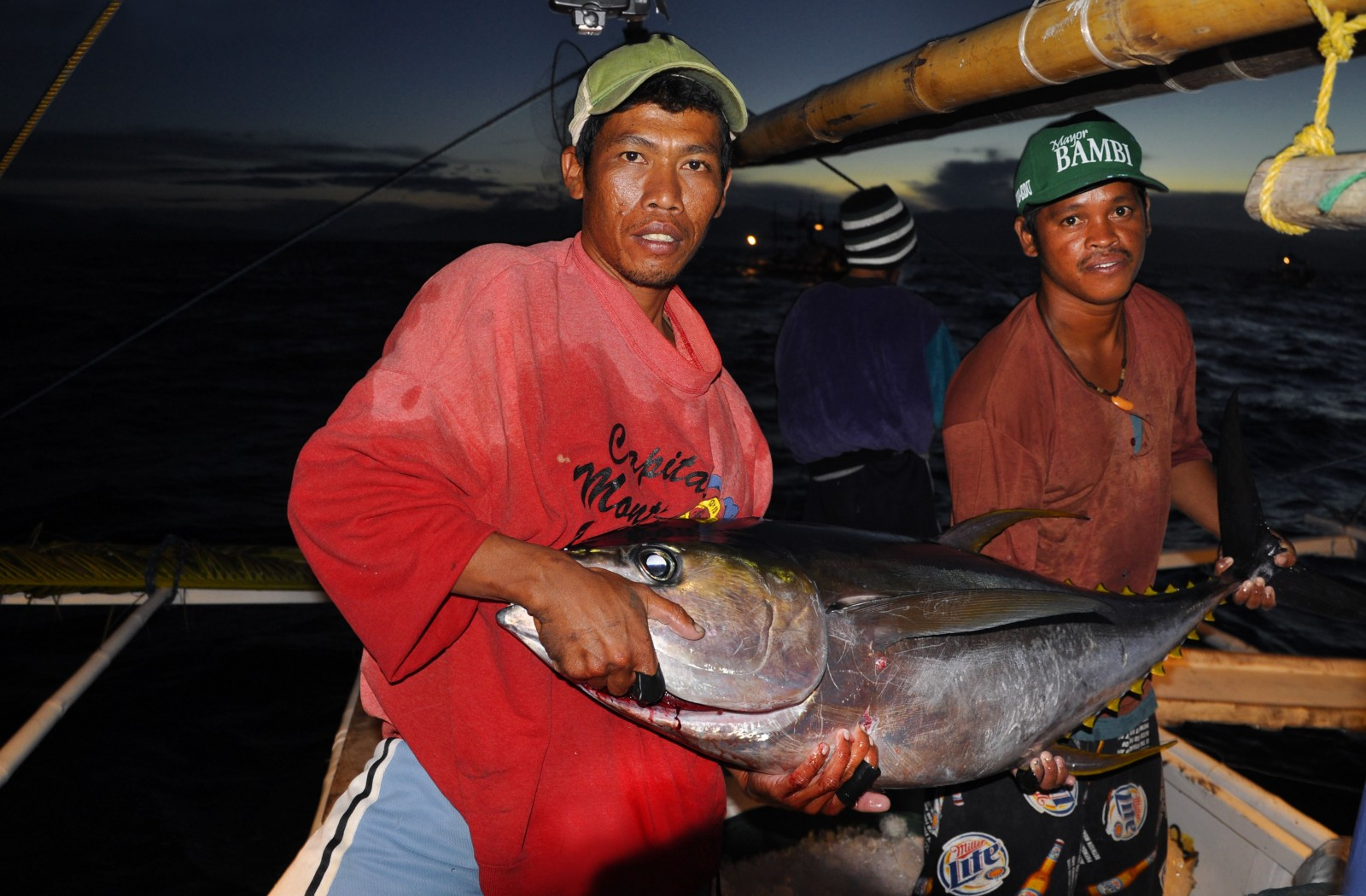 tuna-story-main-image-by-gregg-yan-for-wwf.jpg
